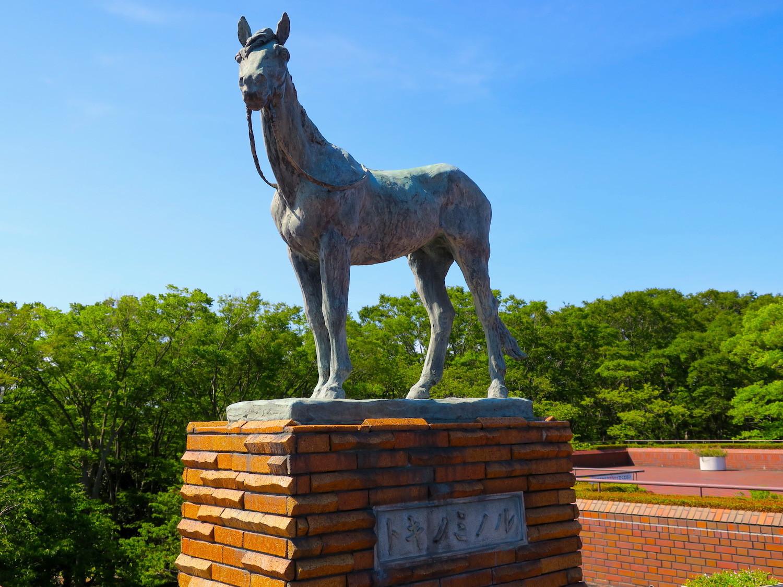 馬の博物館5