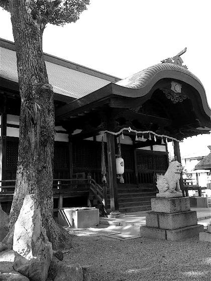 tsushimabeDCIM0759.jpg