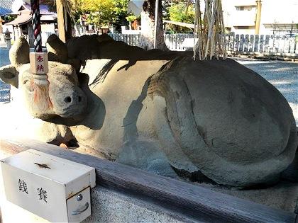 tsushimabeDCIM0763.jpg