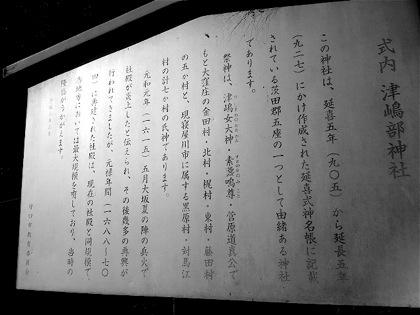 tsushimabeDCIM0767.jpg