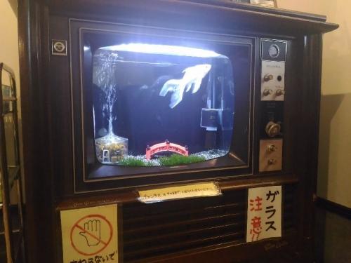 IsahayaTorimura_000_org.jpg