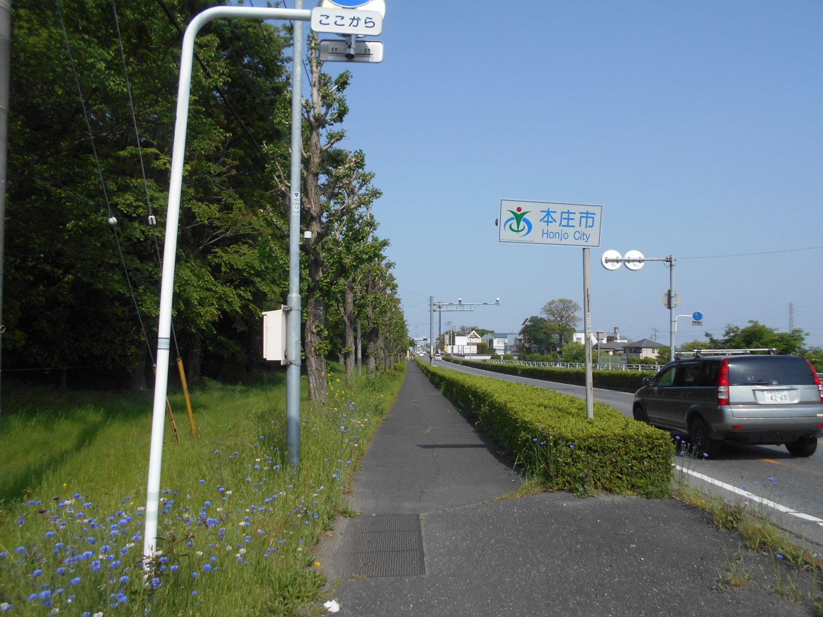 DSCN4199.jpg