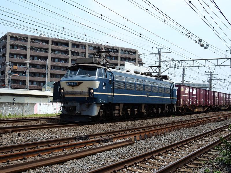 JRkamotu72 (2)
