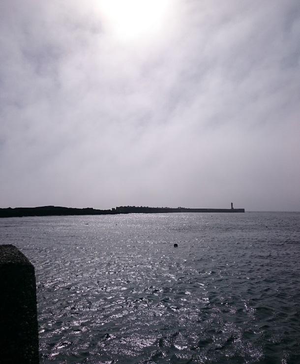 180629城ヶ島