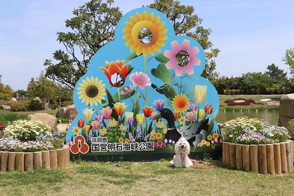 2018.05.14 淡路島旅行2日目② 明石海峡公園⑤-9