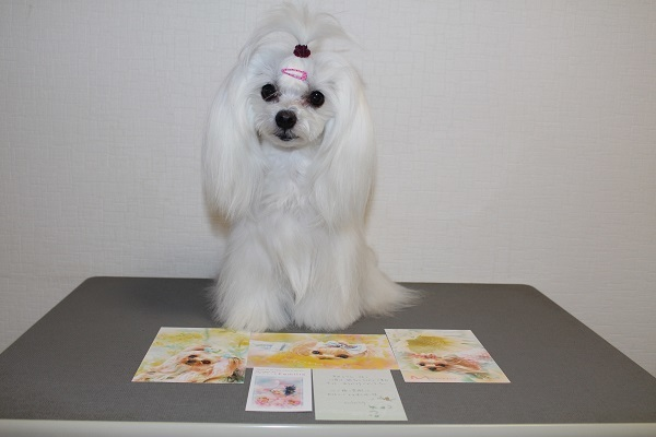 2018.05.28 桃ちゃんのポストカード-2