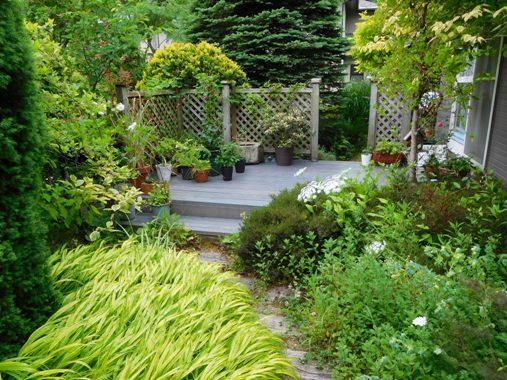 my-garden 179