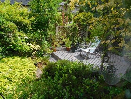 my-garden 019 (3)