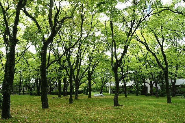 中央公園12