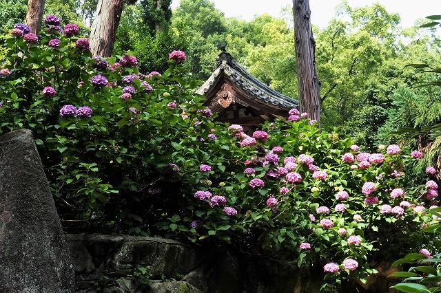 南宮神社7