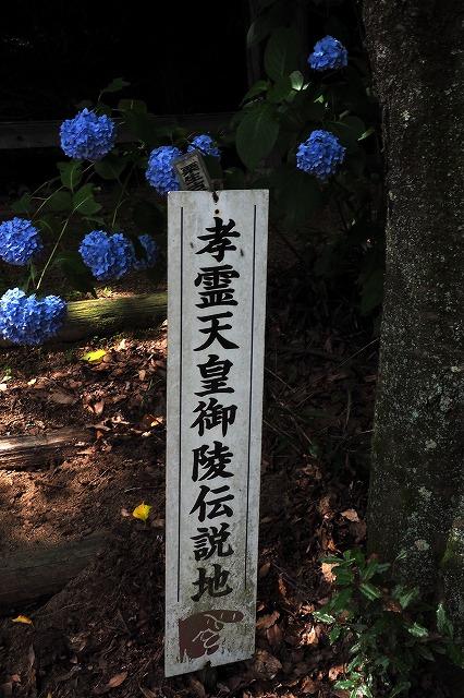 南宮神社8