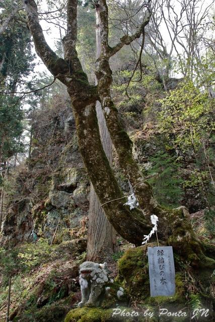 iwate1804-067.jpg