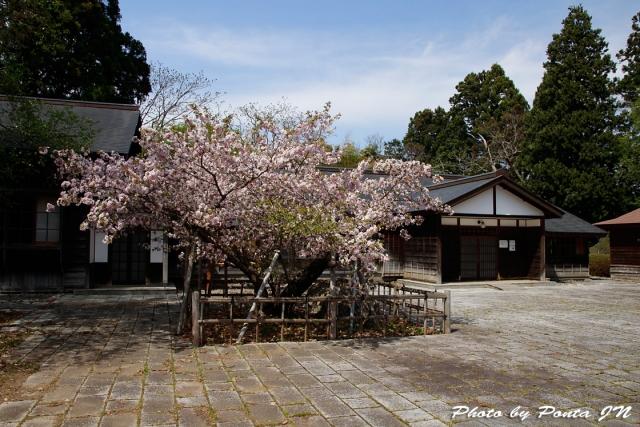 iwate1804-081.jpg