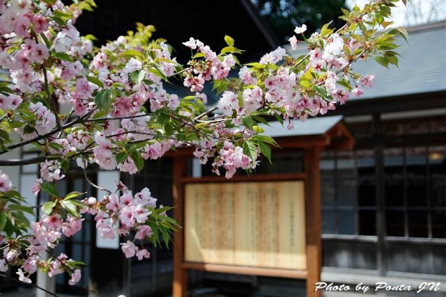 iwate1804-084.jpg