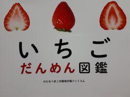 【写真】いちごだんめん図鑑(わたなべまこ@築地市場ドットコム)