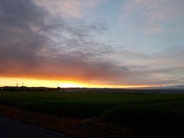 【写真】農園前から見る日の出の様子