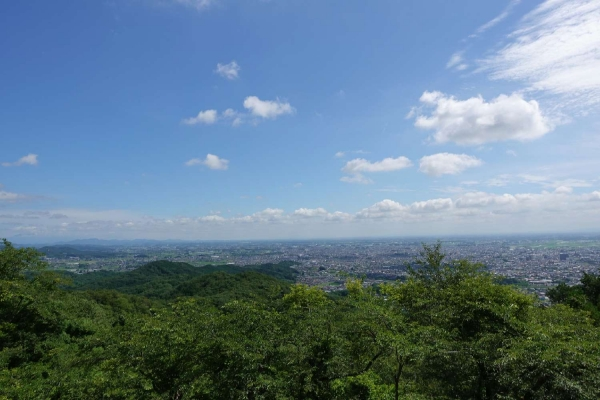 太平山 とちぎ あじさいまつり