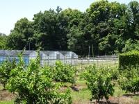 徳島県立農林水産センター
