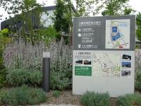 相生坂公園