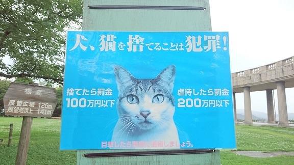 松山総合公園12以前、貼られていた《猫のフンに困っています》の貼り紙を撤去し、代わりに《犬猫を捨てることは犯罪》の貼り紙がされています。