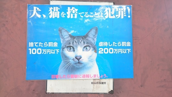 松山総合公園⑩以前、貼られていた《猫のフンに困っています》の貼り紙の上に《犬猫を捨てることは犯罪》の貼り紙がされています。