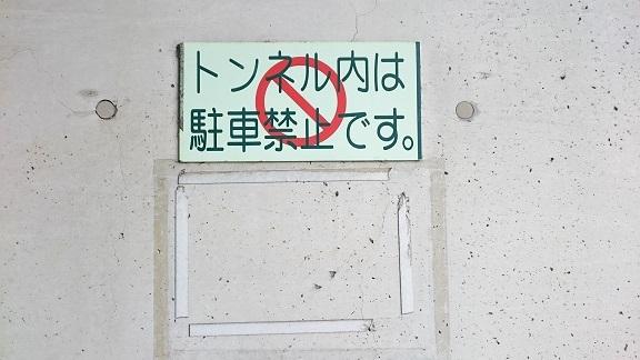 松山総合公園⑪トンネル内に貼られていた《猫にエサを与えないでください》の貼り紙も撤去されました(^-^)v