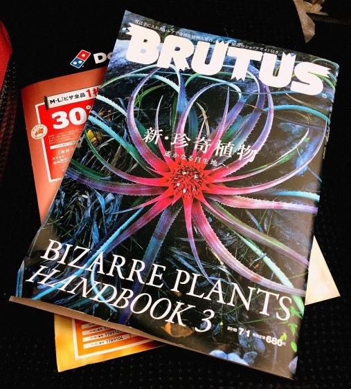 Brutus No872
