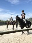 20180803 夏九に向けて馬の写真_180803_0022