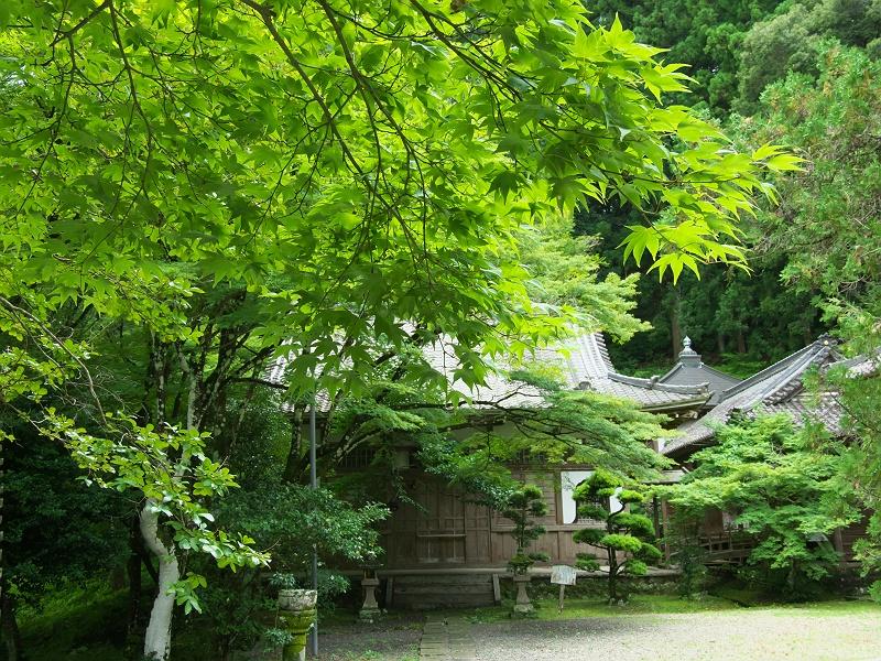 夏の大洞院 二
