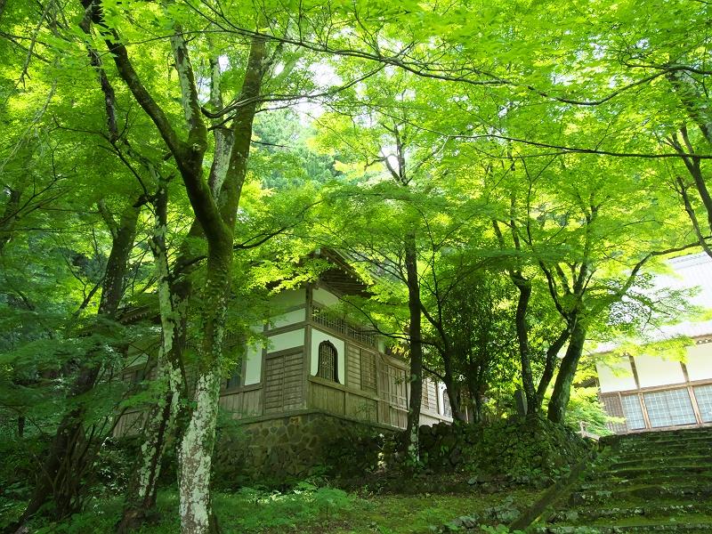 夏の大洞院 三