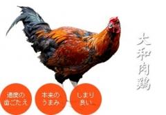 麺尊 RAGE【参四】-3