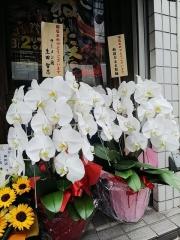 【新店】長尾中華そば 神田店-18