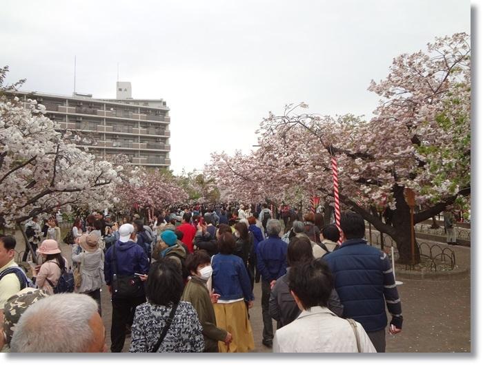 大阪・京都の旅DSC01298