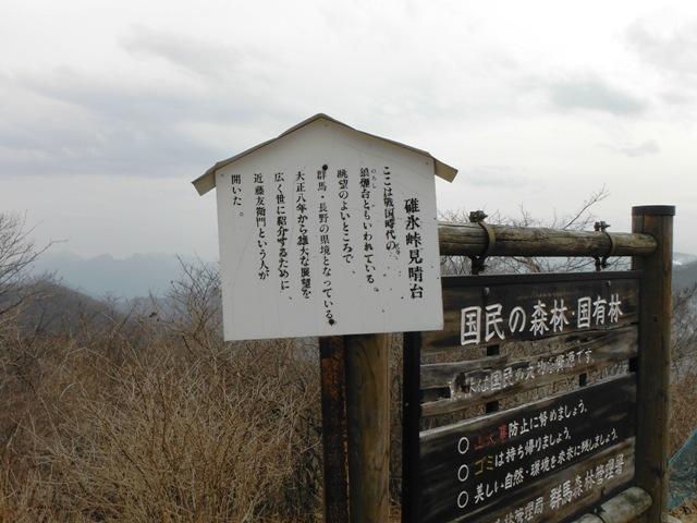 碓氷峠見晴台(軽井沢町) (5)