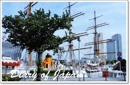 横浜で帆船