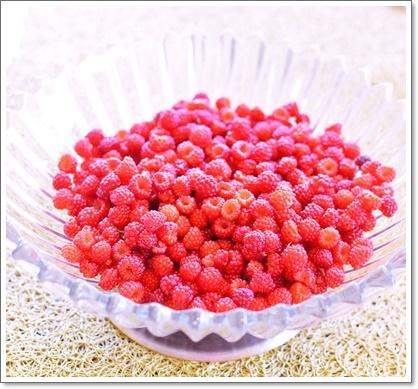 庭採れraspberry