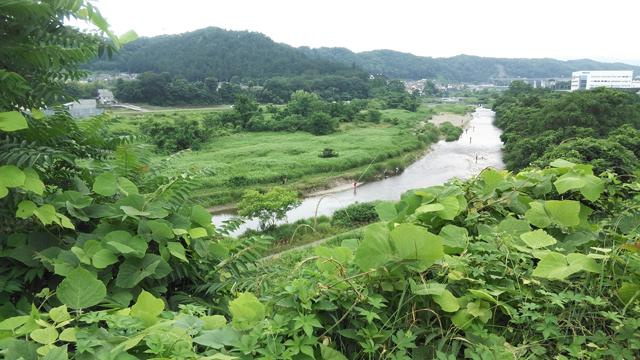 どこの渓流?秋川、新宿から電車で約50分。