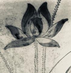 lotus-yingyang[1]
