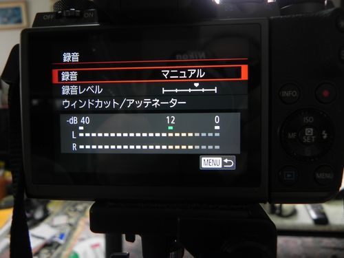 DSCN6407.jpg