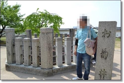 姫路DSC_0357-20180422
