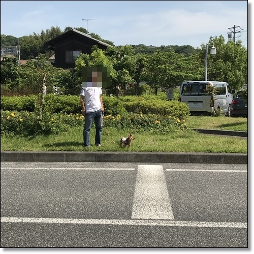 運動会と少林寺IMG_5304-20180605
