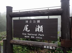 OZ8 01