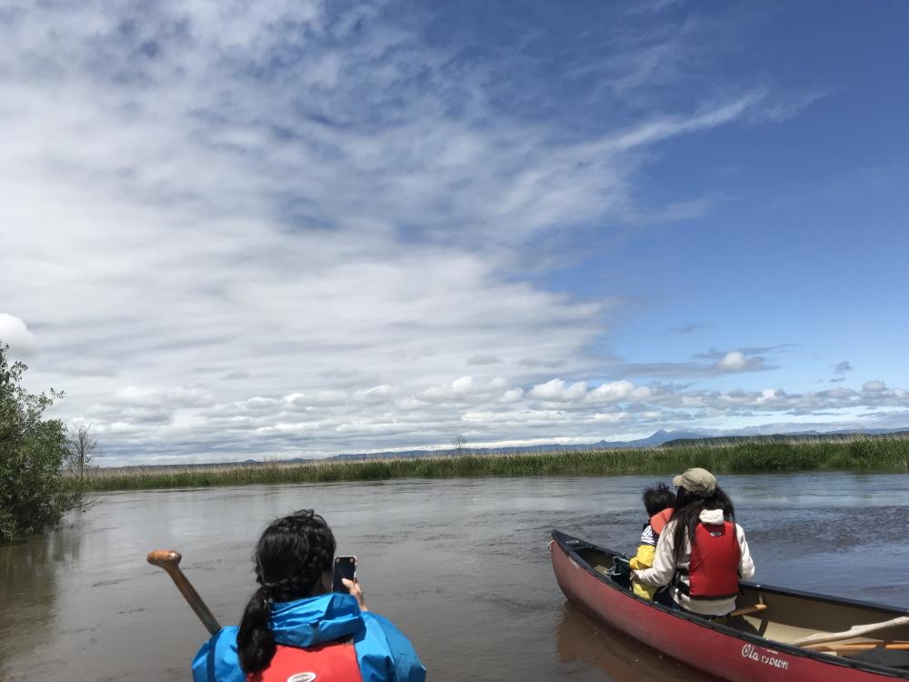 20180706釧路湿原