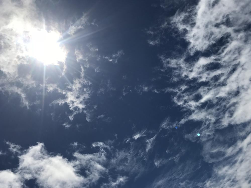 20180706久しぶりの太陽