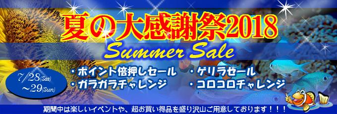 banner_summer-d91ac.jpg