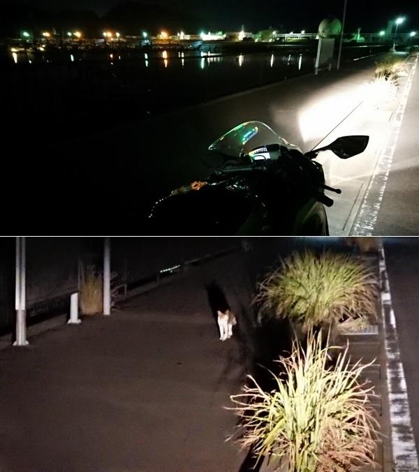 2018年8月 10R夜間散歩 4