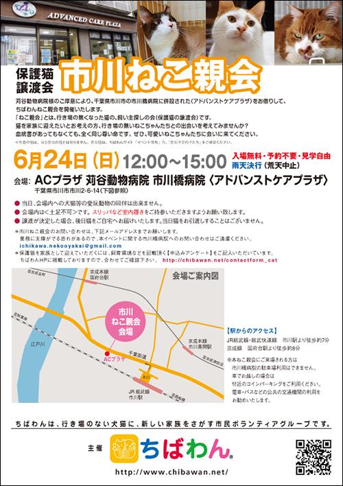 ichikawa20_poster.jpg