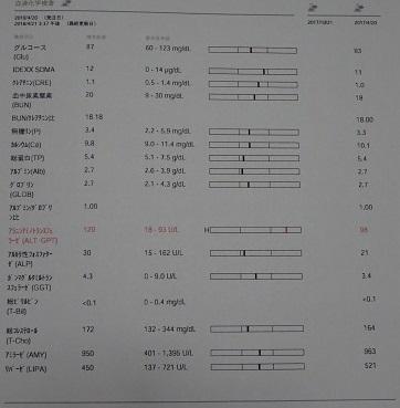 DSC05648.jpg