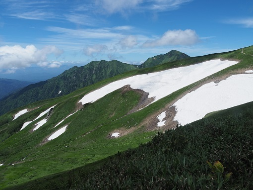 大日岳とオンベ松尾根