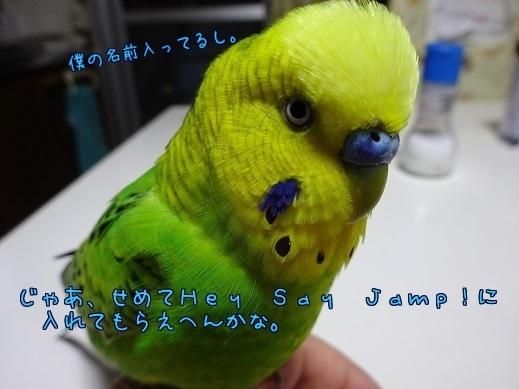 せめてHeySayJamp